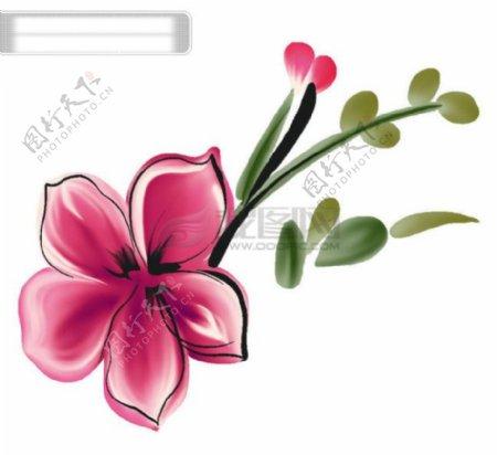 花纹画框花框花边边框相册模板装饰韩国花纹图库2psd分层素材源文件