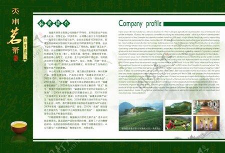 茶叶画册4图片