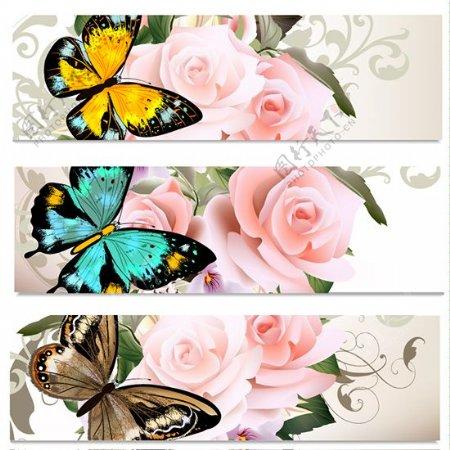 炫丽蝴蝶矢量素材