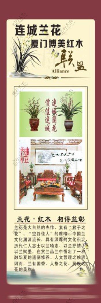 兰花和红木原创展板