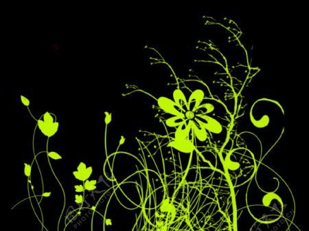杂乱的线条花纹
