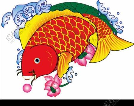 难得的鱼鱼素材图片