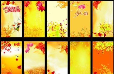 枫叶麦穗图片
