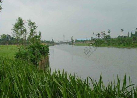 大沙河治水工程整治后拍摄图图片