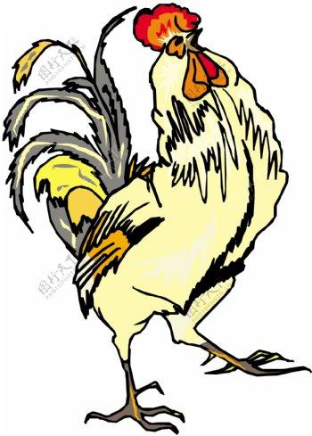 家禽家畜动物矢量素材EPS格式0312