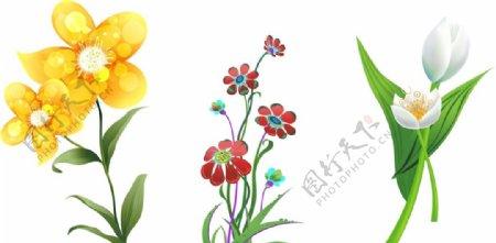矢量花朵春天