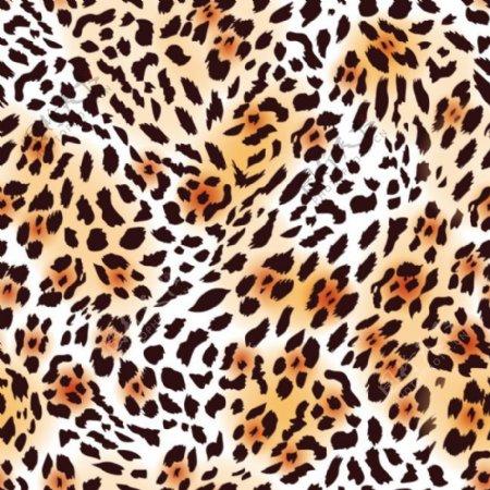 动物毛皮纹理无缝花纹矢量图背景
