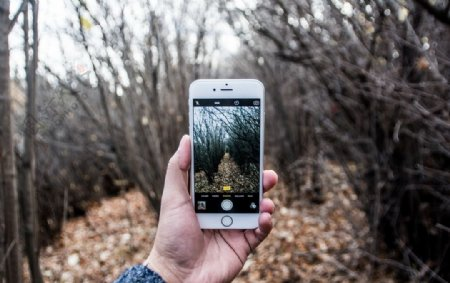 手机拍照片