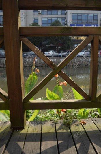 围栏围栏外花