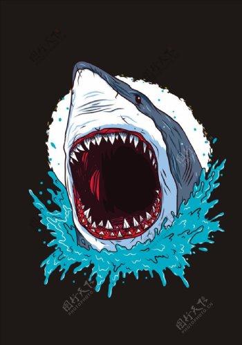 手绘大鲨鱼矢量图下载
