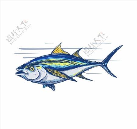 手绘鱼矢量图下载