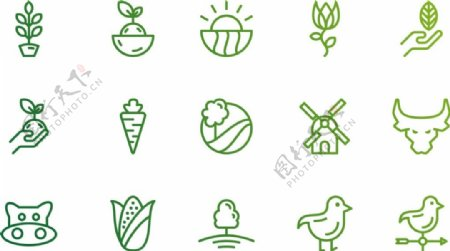 农业和自然的绿色图标