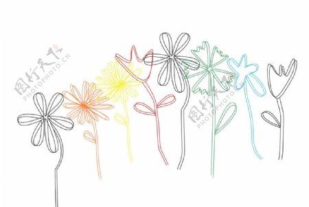 各种花朵组合