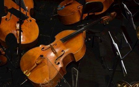 乐器海报小提琴大提琴月亮