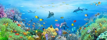 海底世界海豚小鱼大鱼儿童卡通画