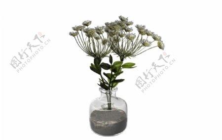 菊花花瓶3d模型图片