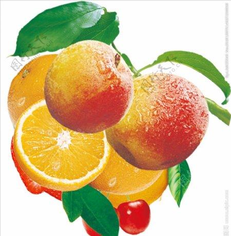 桃子橙子山楂图片