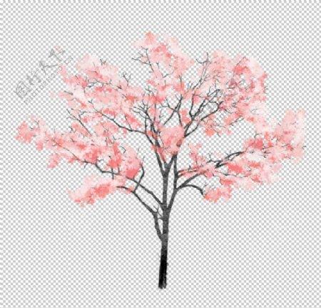 樱花装饰素材图片