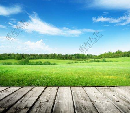 木板草地素材图片