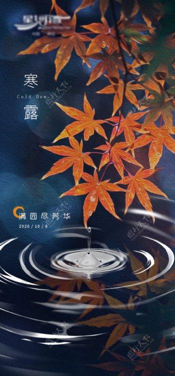 秋季秋景寒露水滴枫叶图片