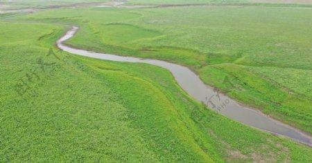 绿草地上的小河图片