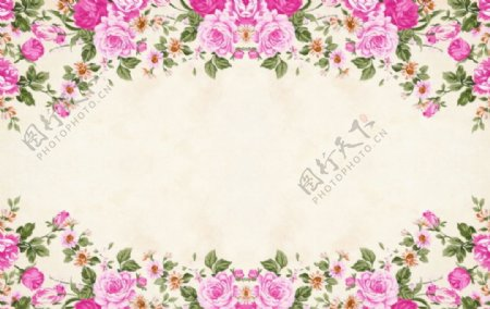 花的框架背景粉花卉图片