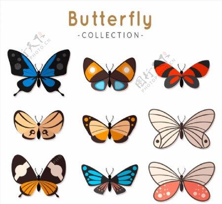 精美蝴蝶设计图片