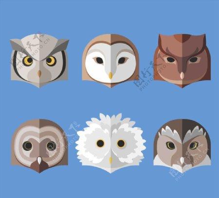 猫头鹰头像矢量图片