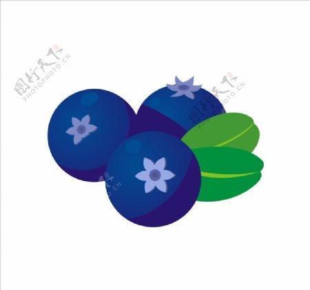 矢量蓝莓图片