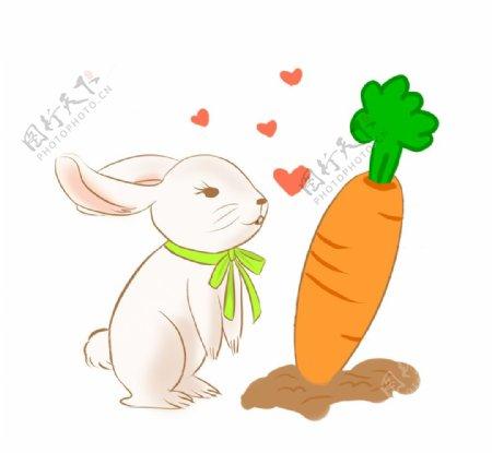 兔子胡萝卜插画图片