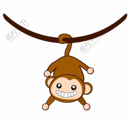 倒挂绳子的猴子图片
