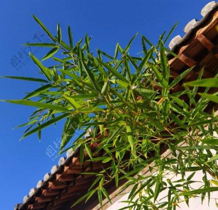 竹子屋檐围墙图片