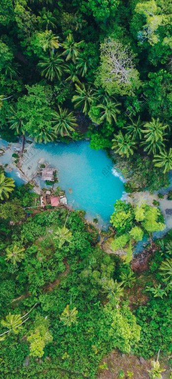 俯瞰森林清水潭图片
