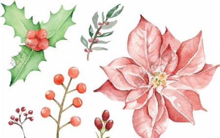 圣诞桂皮与树叶图片