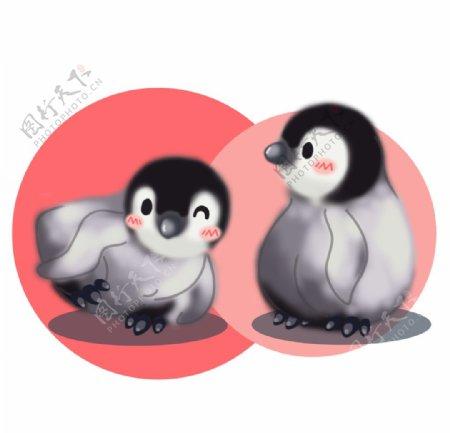 可爱企鹅插画图片