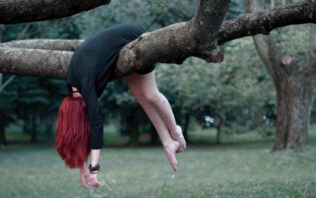 树木创意图片