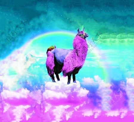 彩虹羊驼图片