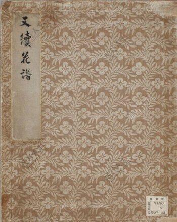 樱花花谱图片