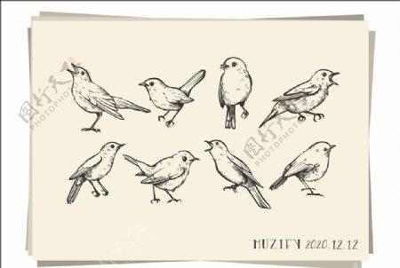 8款入小鸟素描画图片