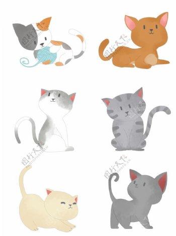 一组可爱的猫咪图片
