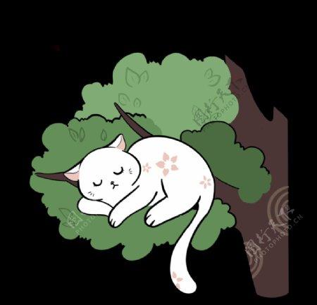 夜晚趴在树上睡觉的白猫图片