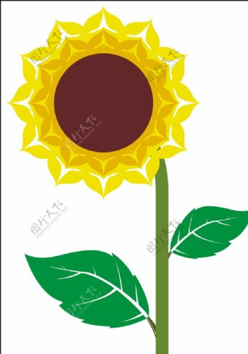向日葵矢量图片