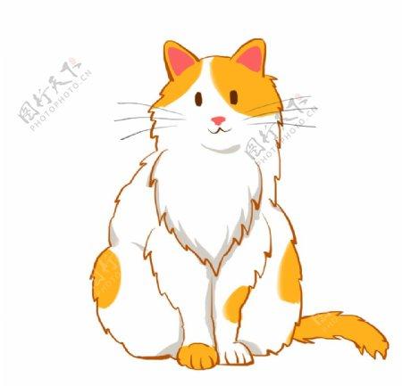 可爱的小猫插画图片