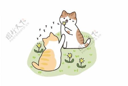 草地上玩耍的两只小猫图片