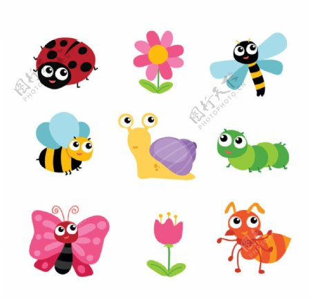 昆虫蝴蝶图片