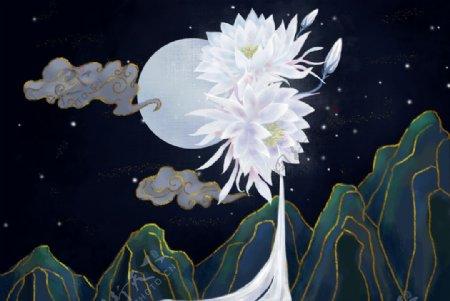 荷花莲花背景夜景图片